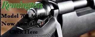 Remington Model 700 Actions